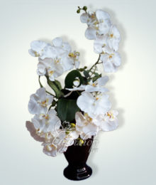 Hoa lụa, hoa giả Uyên shop, Hoa lan trắng