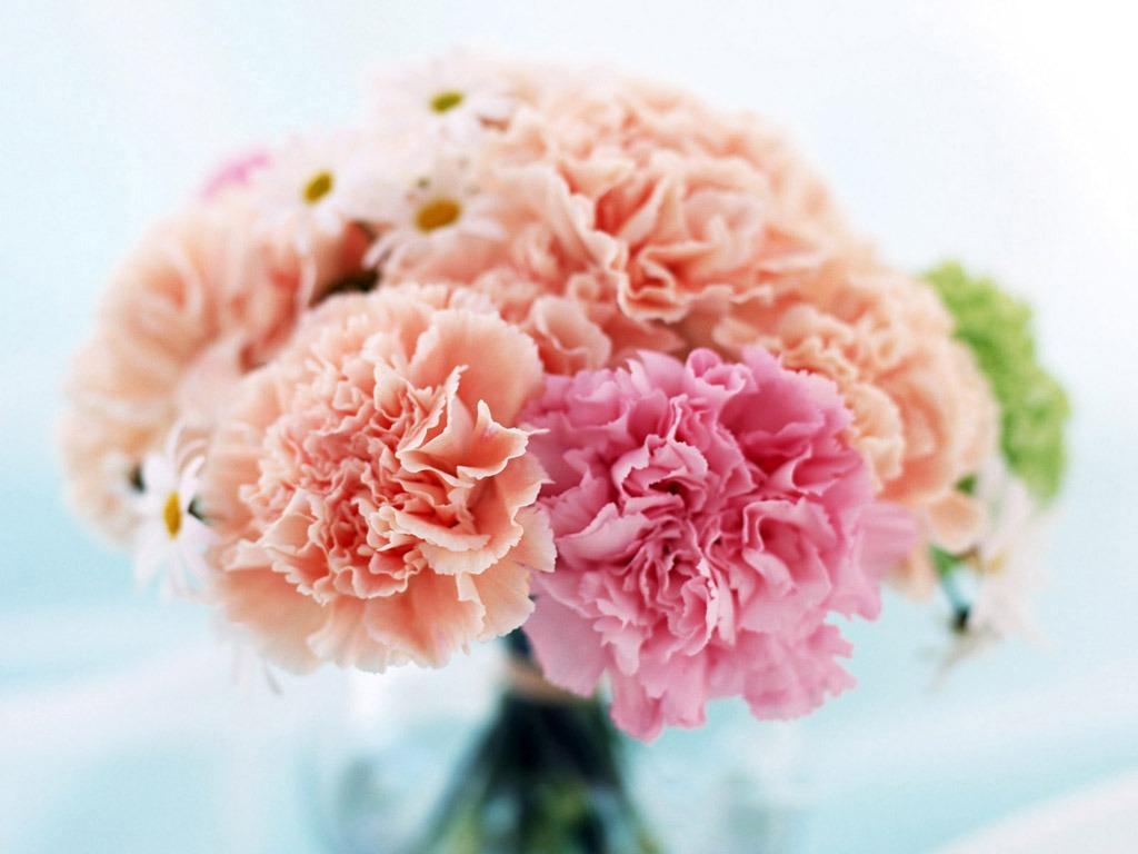 Hoa lụa, hoa giả Uyên shop, Những câu đố vui về hoa