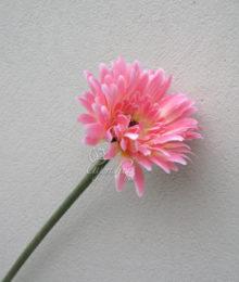 Hoa lụa, hoa giả Uyên shop, Hoa Đồng Tiền