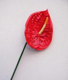 Hoa lụa, hoa giả Uyên shop, Hồng môn cành