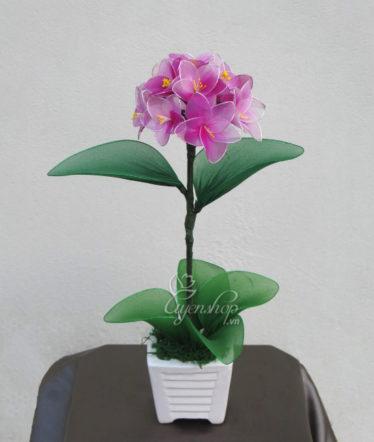 Hoa lụa, hoa giả Uyên shop, Cẩm tú cầu