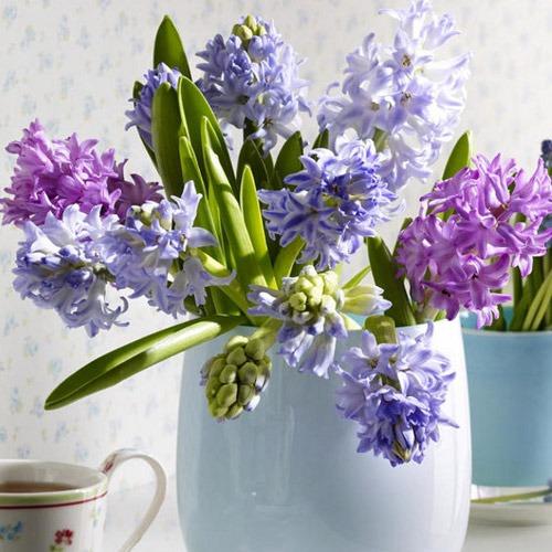 uyenshop - hoa xanh - 13