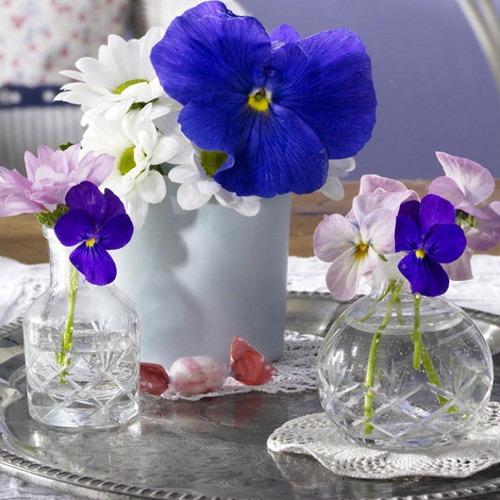 uyenshop - hoa xanh - 14