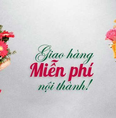 Hoa lụa, hoa giả Uyên shop, Miễn phí ship hàng