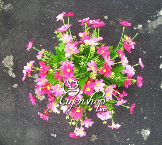 hoa nho de ban 02- hoa lua uyenshop