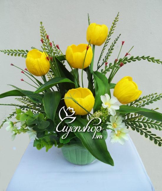 hoa tulip nho - uyenshop