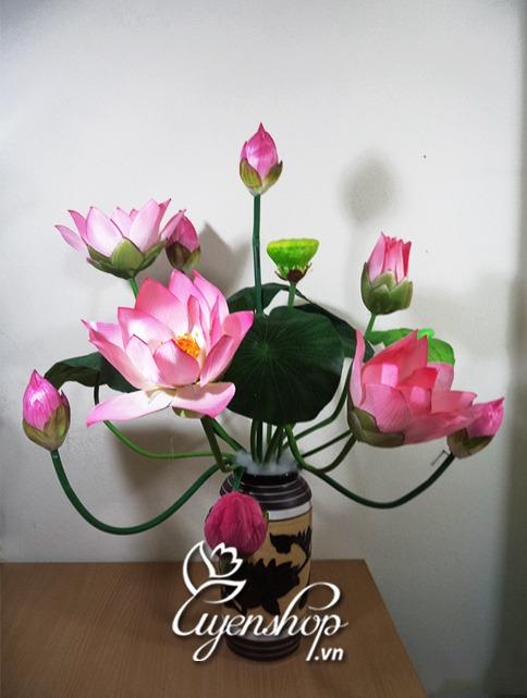 hoasen - hoa lua - uyenshop