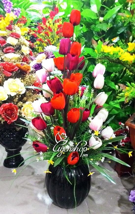 tulip nhieu mau - hoa lua - hoa gia
