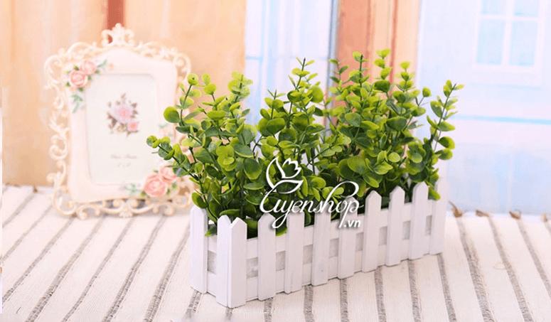 hang rao hoa cay xanh - hoa gia