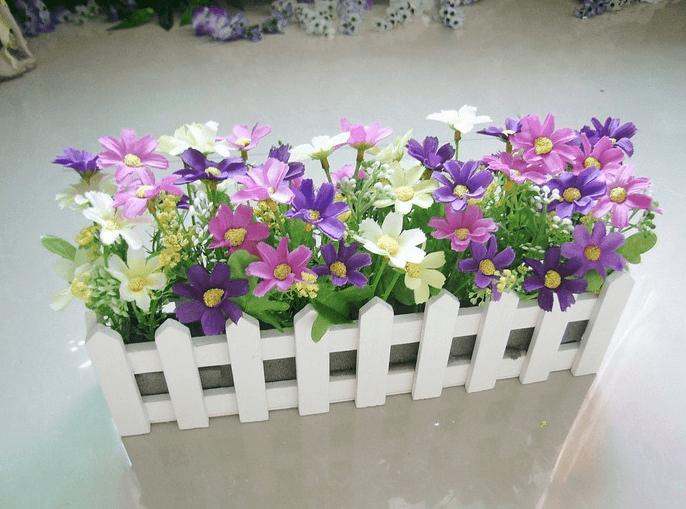hang rao hoa cuc tim - hoa gia
