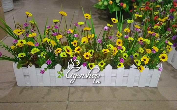 hang rao hoa gia - hoa vang