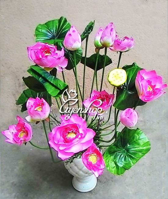 hoa sen Thai - hoa lua - hoa gia