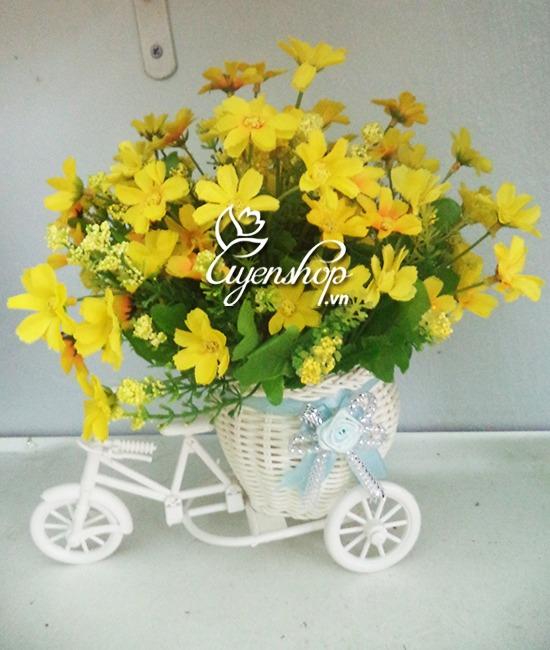 xe dap hoa - hoa gia - hoa lua