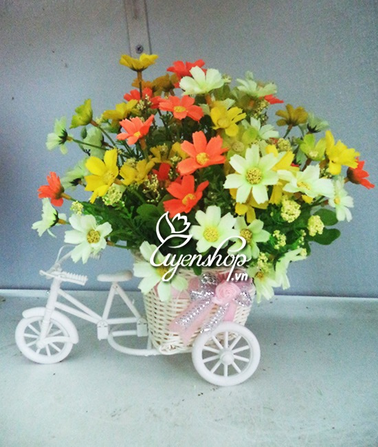 xe dap hoa - hoa gia