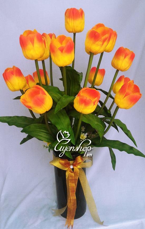 hoa tulip cam - hoa lua