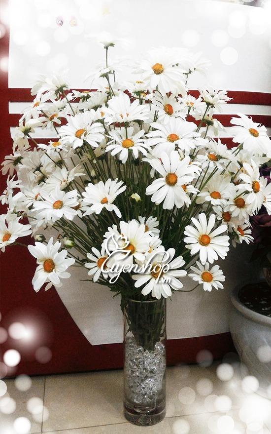 hoa cuc hoa mi - uyenshop