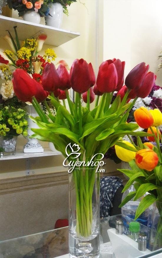 hoa tulip nho - hoa lua