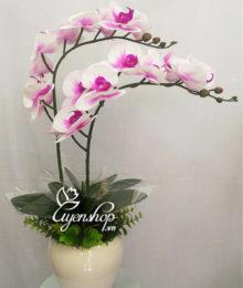 Hoa lụa, hoa giả Uyên shop, Chậu Lan trắng tím
