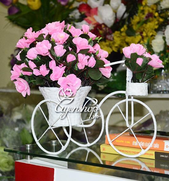xe dap hoa do quyen