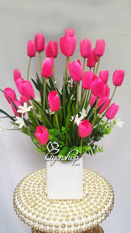 hoa-tulip-hong