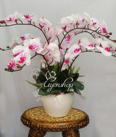 Hoa lụa, hoa giả Uyên shop, Chậu Lan Đốm