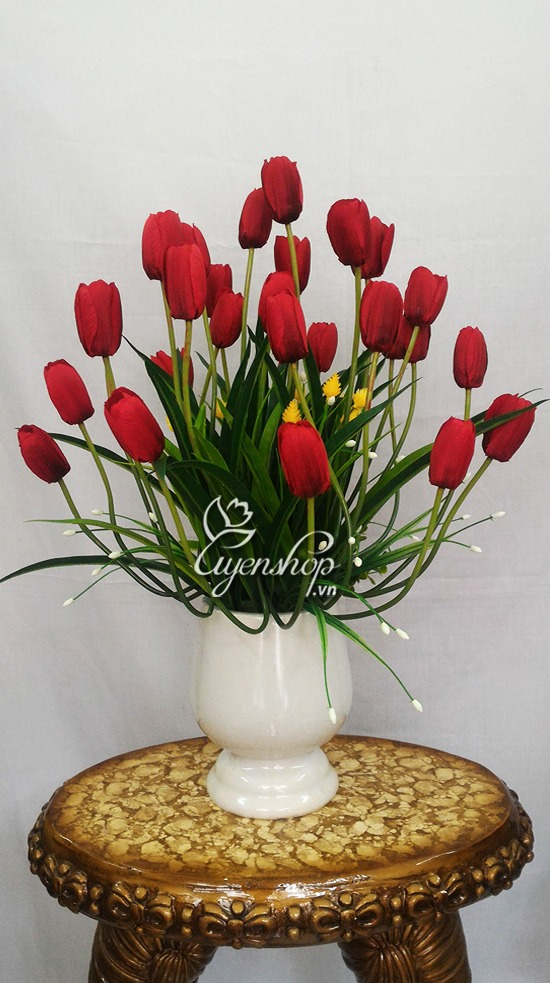 hoa-tulip-do