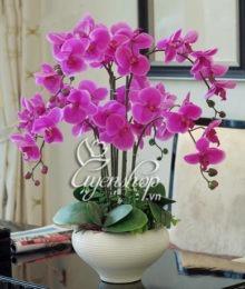Hoa lụa, hoa giả Uyên shop, Cách làm sạch hoa giả đơn giản và hiệu quả có thể bạn chưa biết