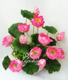 Hoa lụa, hoa giả Uyên shop, Chậu hoa sen