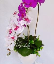 Hoa lụa, hoa giả Uyên shop, Chậu Lan tím