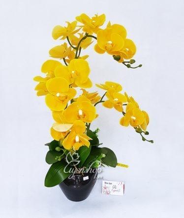 Hoa lụa, hoa giả Uyên shop, Chậu Lan vàng