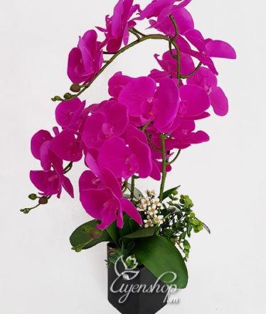 Hoa lụa, hoa giả Uyên shop, Chậu Lan tím đẹp