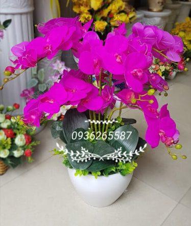 Hoa lụa, hoa giả Uyên shop, Chậu Lan Hồ Điệp tím