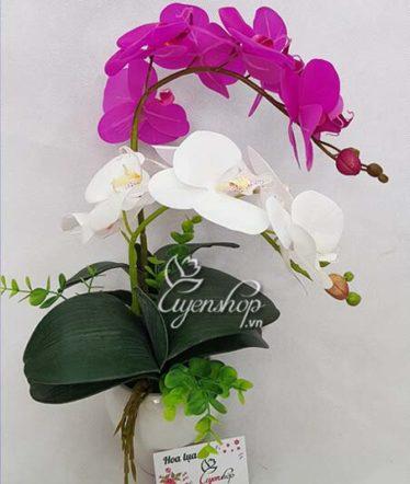 Hoa lụa, hoa giả Uyên shop, Chậu lan xinh