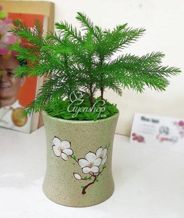 Hoa lụa, hoa giả Uyên shop, Cây tùng bách tán