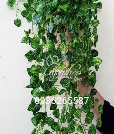 Hoa lụa, hoa giả Uyên shop, Giỏ cây xanh treo tường