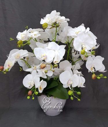 Hoa lụa, hoa giả Uyên shop, Lan trắng sang trọng