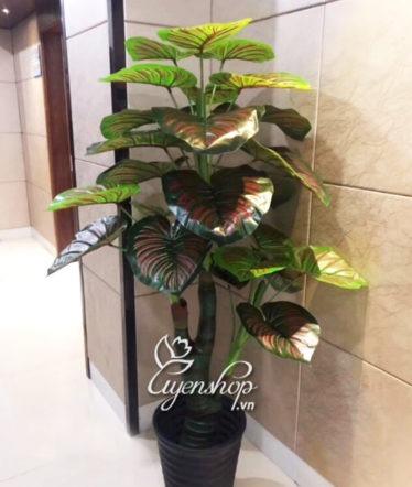 Hoa lụa, hoa giả Uyên shop, Cây Giả – Cây Trầu Ông