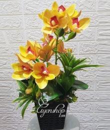Hoa lụa, hoa giả Uyên shop, Bình địa lan nhỏ