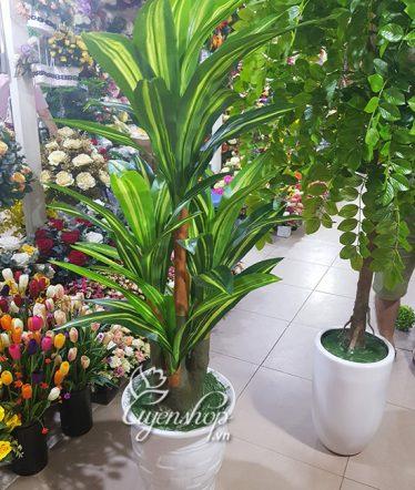 Hoa lụa, hoa giả Uyên shop, Cây Thiết Mộc Lan