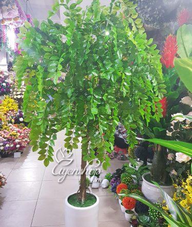 Hoa lụa, hoa giả Uyên shop, Cây Si cảnh