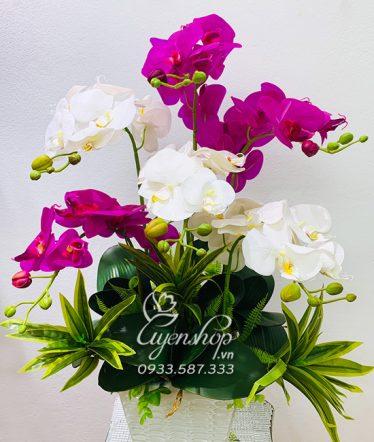 Hoa lụa, hoa giả Uyên shop, Sang Trọng cùng Lan Trắng tím