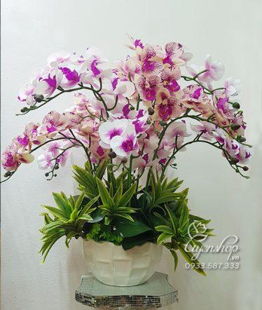 Hoa lụa, hoa giả Uyên shop, Chậu Lan Phòng Khách